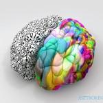 agyféltekék